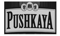 Pushkaya_Carrusel